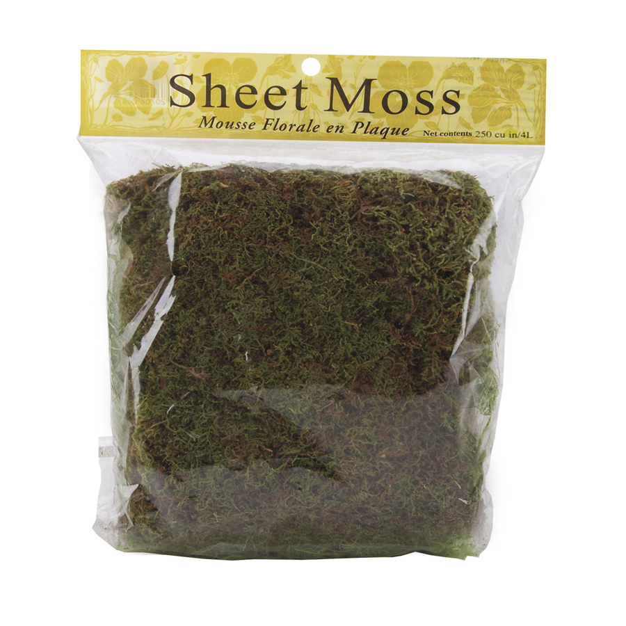 Bnib Panacea Products Sheet Moss 250 Cubic Inches 20708006548 Ebay